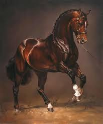 63 best horse art i love images on pinterest equine art horse