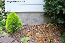 Parge Basement Walls by Parging The Foundation Walls New York Renovator