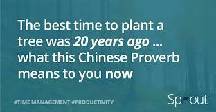 the best time to plant a tree was 20 years ago what this