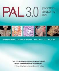 Anatomy Of The Heart Lab Marieb U0026 Hoehn Human Anatomy U0026 Physiology 10th Edition
