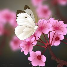 pink flower white butterfly on a pink flower by cocteautwins on deviantart