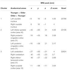 frontiers age related shift in neuro activation during a word