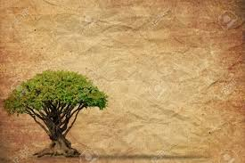 tree with grunge paper vintage background stock photo picture