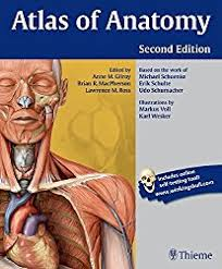 Best Anatomy And Physiology Textbook 5 Anatomy Books For Medical Students