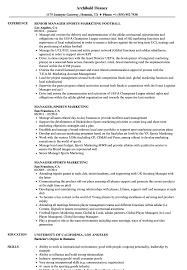resumes for marketing jobs manager sports marketing resume samples velvet jobs