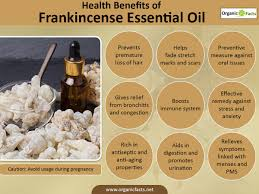 15 amazing benefits of frankincense essential oil organic facts
