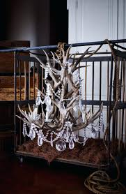 Decorative Wine Racks For Home Real Deer Antler Wine Rack Build Elk Cast Iron U2013 Easyvbapps Com