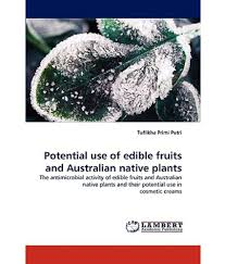 native plants in india potential use of edible fruits and australian native plants buy
