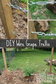 diy wire wall trellis make a wire wall trellis australian handyman