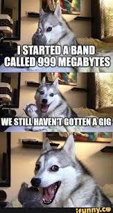 Dog Jokes Meme - bigwords101 some fun puns the grammar diva blog pinterest