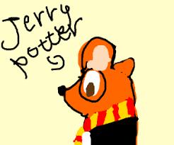 harry potter chinchilla