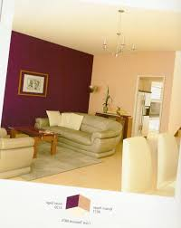 wonderful asian paints interior living room colour combinations