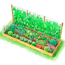 planting plans inspired by the white house kitchen garden