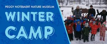 winter camp peggy notebaert nature museum
