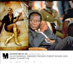 Most Hilarious Memes - the most hilarious memes on mugabe s marriage proposal to obama
