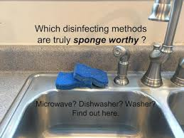 What Is The Best Kitchen Sink by What Is The Best Way To Disinfect The Kitchen Sponge Stop The