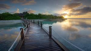 bridges bridge tropical resort bungalow water nature bridges sea