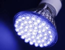 vital l full spectrum light for birds 10 things you must look for when choosing led grow lights