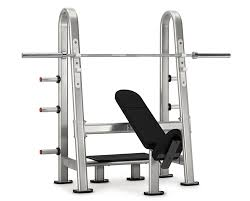 Workout Bench Modells Nautilus Olympic Incline Bench Core Health And Fitness