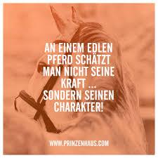 pferde spr che www prinzenhaus an einem edlen pferd schätzt nicht seine