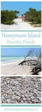 best 25 beach houses in florida ideas on pinterest