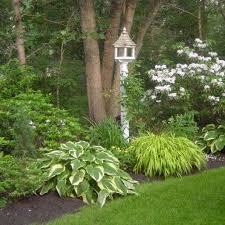 Easy Backyard Landscape Ideas 25 Unique Simple Landscaping Ideas Ideas On Pinterest Front
