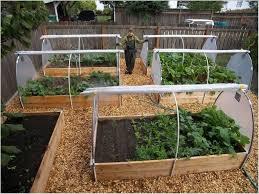 home vegetable garden plans garden designs garden design vegetable patch home vegetable