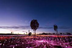 field of light uluru spectacular field of light installation comes to uluru fields