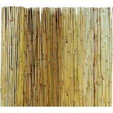 stuoia bamboo canniccio stuoia arella in bamboo varie misure