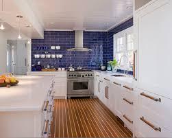 Blue Tile Backsplash Houzz - Blue tile backsplash kitchen
