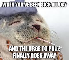 Puke Meme - livememe com satisfied sick seal