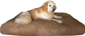 therapeutic dog beds u2013 thewhitestreak com