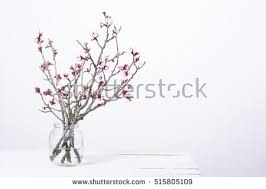 Branches In A Vase Flower Vase Stock Images Royalty Free Images U0026 Vectors Shutterstock