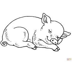 pig color print pig coloring pages animals