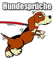 lustige hundesprüche hundesprüche lustige sprüche über hunde