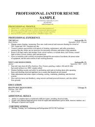 profile resume examples efficiencyexperts us