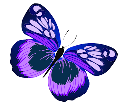 blue and purple butterfly png clipart gallery yopriceville high