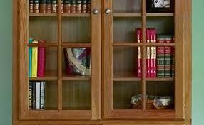 Low Bookcases Excellent Bookshelf Extraordinary Low Bookcase With Doors