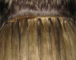 micro weft extensions hair extensions