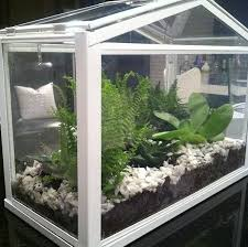 22 best ikea socker images on pinterest greenhouses plants and