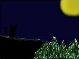 cat in moon light slimber com drawing and painting