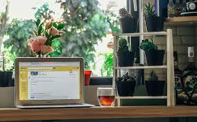 plante de bureau feng shui le feng shui pour plus de productivité et de plaisir au bureau