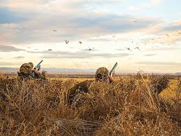 Goose Hunting Layout Blinds 6 Hacks For Hiding Your Layoutblind Field U0026 Stream