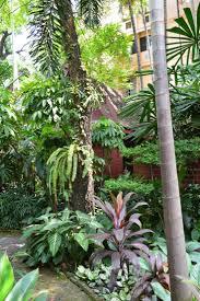 Landscape Garden Ideas Small Gardens by 269 Best Tropical Garden Images On Pinterest Tropical Garden