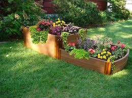 brilliant raised bed garden plants tomatoes in raised garden bed