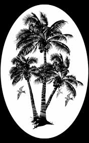 coconut palm tree oval decal