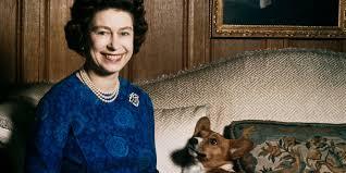 Queen Corgis Queen Elizabeth Ii Considering Adopting Late Gamekeeper U0027s Dogs