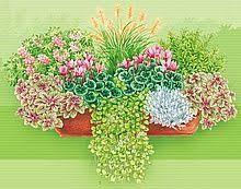 herbstbepflanzung balkon 39 best garten images on diy garden ideas and