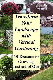 transform your landscape with vertical gardening grow more food