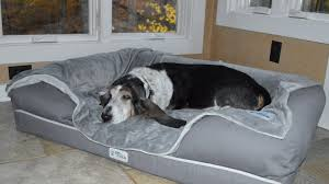 we tested this deluxe memory foam pet bed and our dogs got very